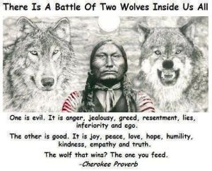 2 wolves